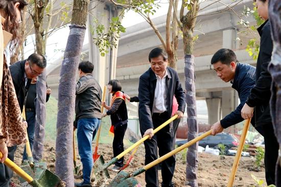 马尾区开展2019年义务植树活动